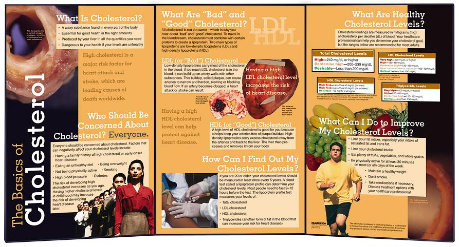 The Basics of Cholesterol Folding Display for health education from Health Edco