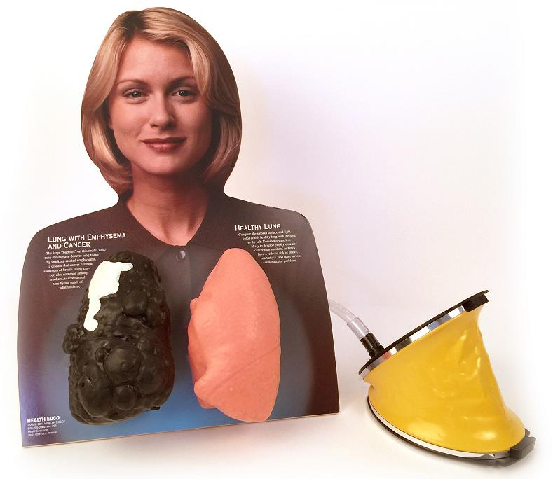 Lou-Wheeze Smoker's Lung Comparison Model tobacco education resource from Health Edco