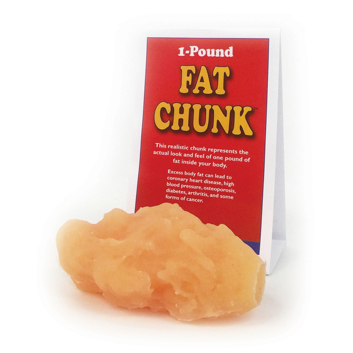 fat chunk model, 1 pound of fat, look and feel of fat, Health Edco, 26016