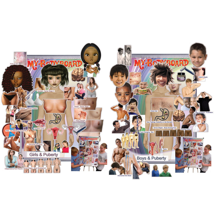 My BodyBoard with male and female puberty magnet sets, interactive display depicts puberty changes in boys or girls, Health Edco, 30318