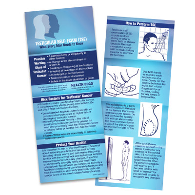 testicular self examination TSE folded 8-panel wallet-sized guide, TSE instructions cancer risk factors warning signs, Health Edco, 37005