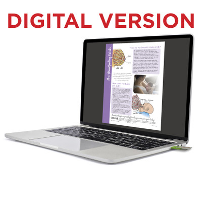 How Breastfeeding Works Virtual Educational Resource, Childbirth Graphics lactation teaching tool shown on laptop, 52513V