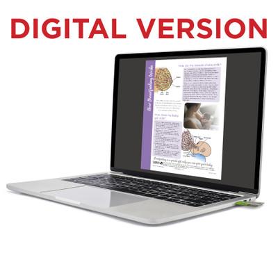 How Breastfeeding Works Tear Pad in virtual, digital format for lactation education by Childbirth Graphics, bilingual, 52513V