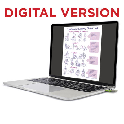 Positions for Laboring Out of Bed Virtual Educational Resource, Childbirth Graphics labor teaching tool on laptop, 52560V