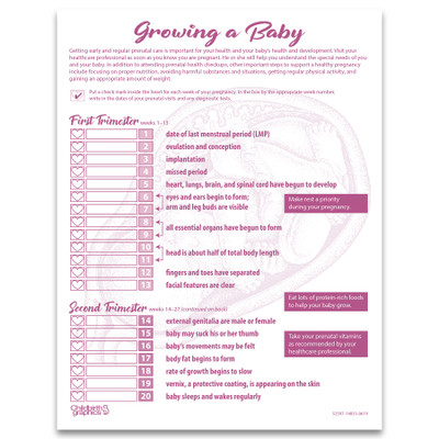 Growing a Baby 1-color illustrated tear pad front, timeline with progress checkboxes 1-2 trimester, Childbirth Graphics, 52597