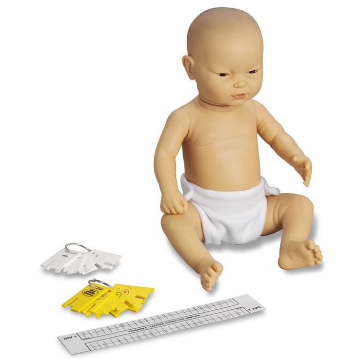 Enhanced/Drug-Affected Ready or Not Tot Asian male control keys & program teacher correction template, Health Edco, 53609