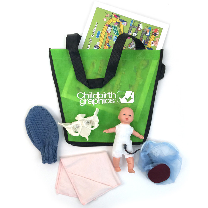 Deluxe Mini-Model Set With Flexible Pelvis from Childbirth Graphics with tear pad, fetal model, pelvis model, and more, 54083