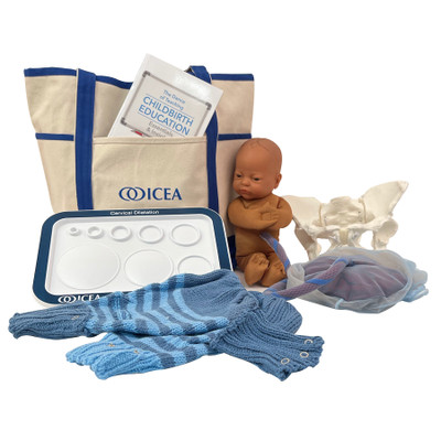 ICEA Educator Tool Kit With Brown Fetal Model by Childbirth Graphics, childbirth educator resources and teaching tools, 78831