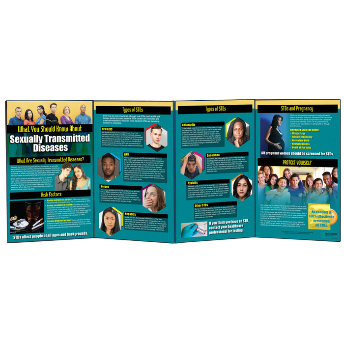 What You Should Know About STDs Folding Display for sex education by Health Edco with information about multiple STDs, 79087