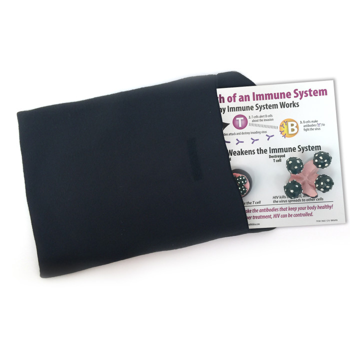 HIV AIDS Death of an Immune System Easel Display for health education from Health Edco placed in protective cover, 79180