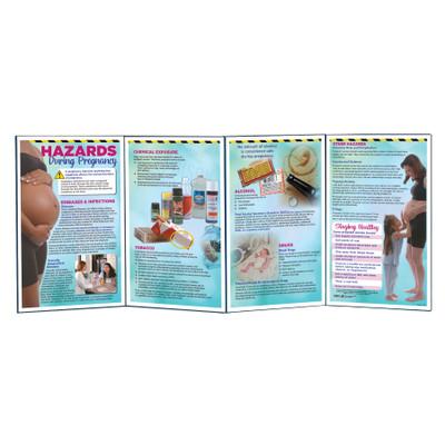Hazards During Pregnancy Folding Display, antenatal education folding display, Childbirth Graphics teaching materials, 79349