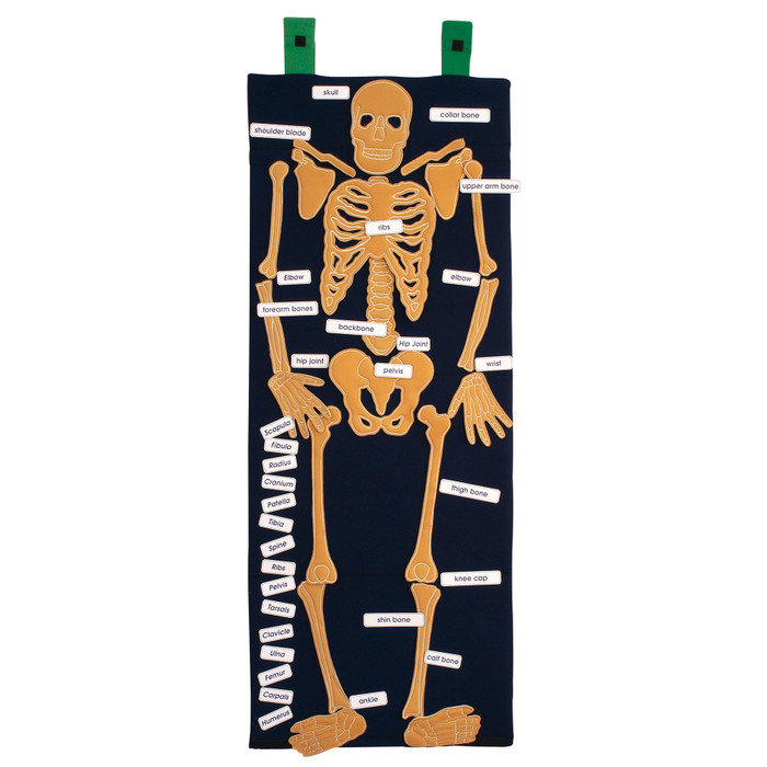 Bag of Bones anatomy and PSHE teaching resource with embroidered bones of the human skeleton and identification labels, 79994