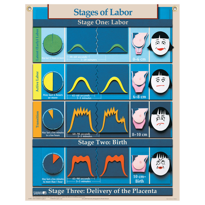 Stages of Labor Chart for childbirth education from Childbirth Graphics, English text with pictorial illustrations, 90620