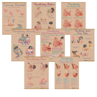 Breastfeeding Chart Set of eight charts for breastfeeding education and teaching laction from Childbirth Graphics, 90809