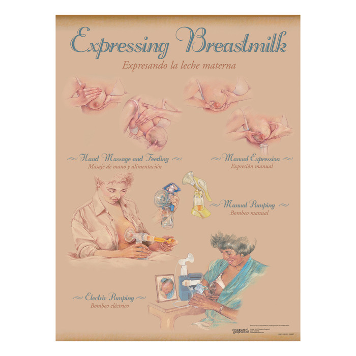 Breastfeeding Chart Set (8), illustrated expressing breastmilk hand massage manual pump eletctric pump, Childbirth Graphics, 90809