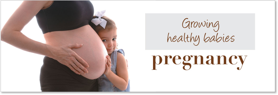 Pregnancy Education Products, Models & Displays